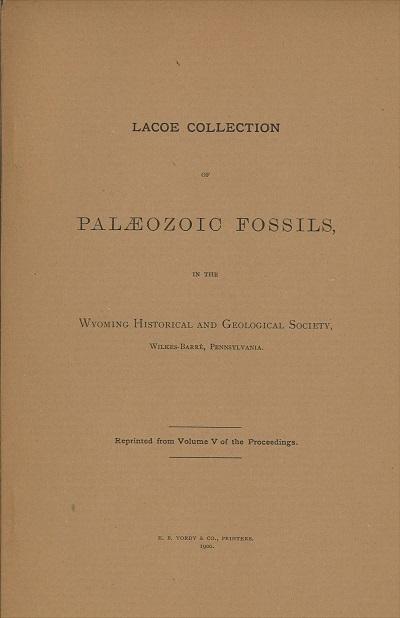 Paleo Fossils