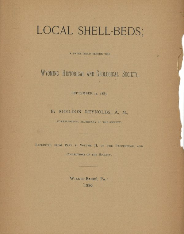 Local Shell Beds